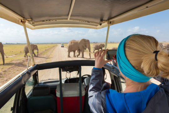 3 African safaris that will offer the best adventure