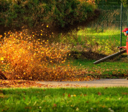 A Brief Guide To Buying A Leaf Blower