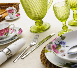 An Overview Of The Fiesta Dinnerware Products