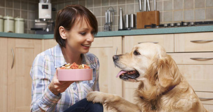 Natural Remedies For Dog Allergies