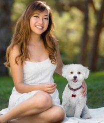 All You Need to Know About Maltipoo Dogs