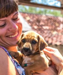 Important Factors to Consider Before Adopting Puppies
