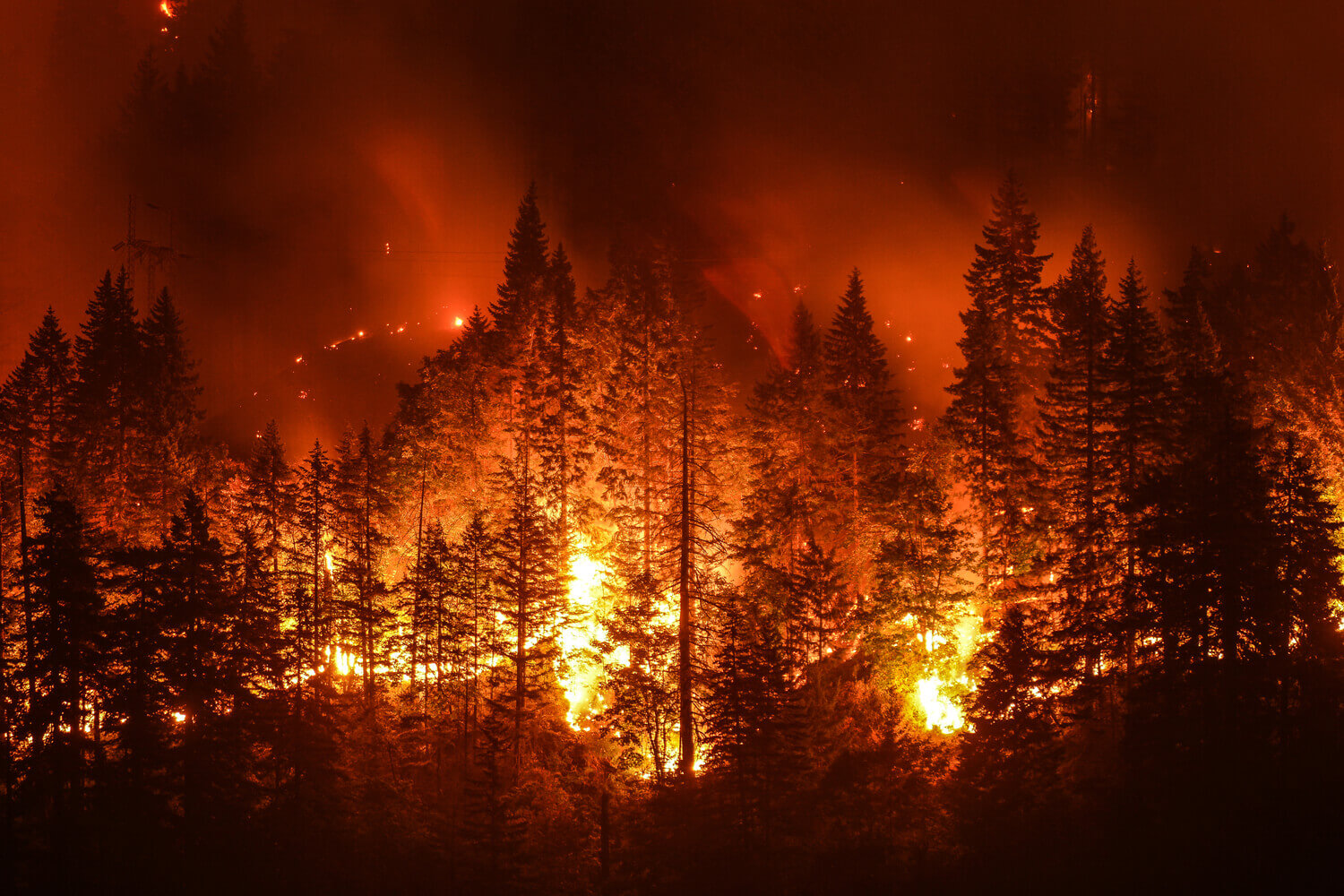 20 Devastating Pictures of the Raging Wildfires in California