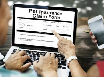 A few tips on how to file for pet insurance claims