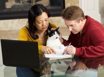 All you need to know before buying pet insurance for cats
