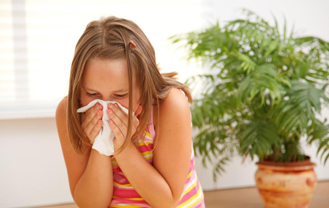 Tips to prevent allergies from three primary sources