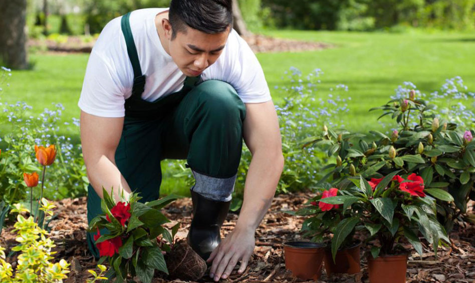 Planning on gardening naked? Heres what you need to know