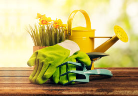 5-Gardening-Accessories-You-Simply-Must-Have