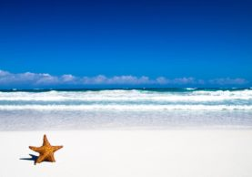 best white sand beaches Australia