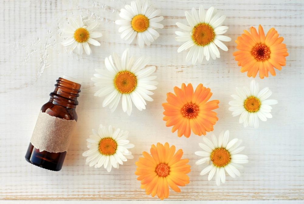 long hair growth chamomile oil