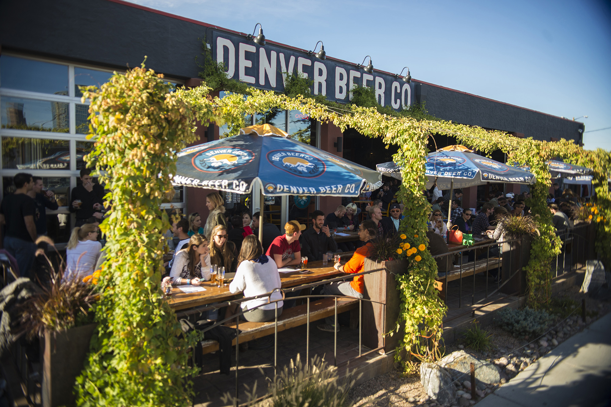 best activities and places to visit in Denver
