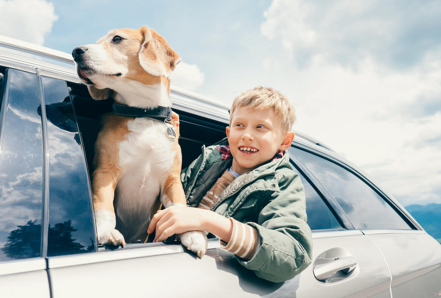 All You Need To Know About Pet Insurance Plans With Direct Claims