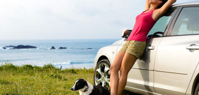 4 Tips for Pet-Friendly Travel